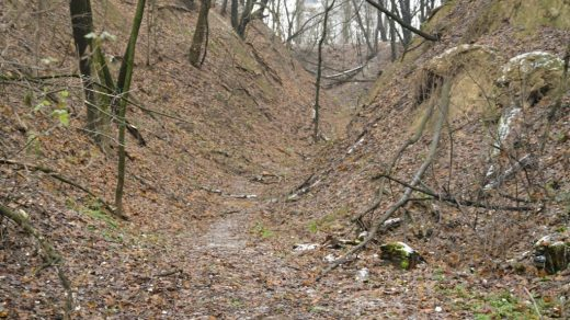 The Babyn Yar ravine where 100,000 Holocaust victims were brutally executed. Photo ©Manuel Herz Architekten.