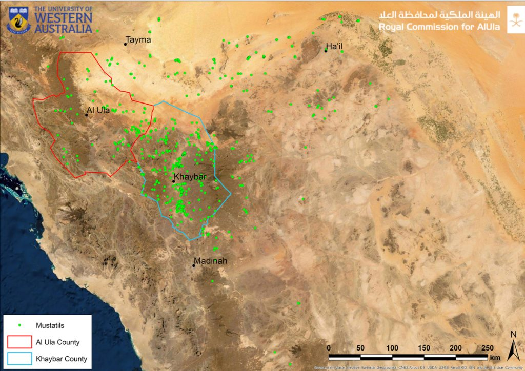 The locations of <em>mustatils</em> in northwest Saudia Arabia. Image courtesy of the Royal Commission for AlUla.