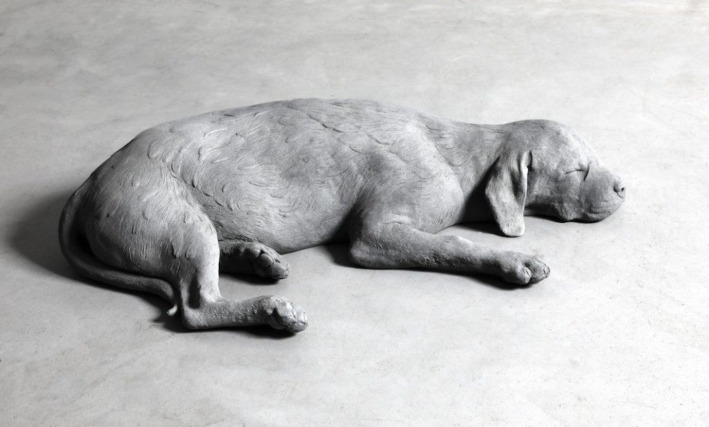Hans Op de Beeck, Dog (2019). Courtesy of Galleria Continua.