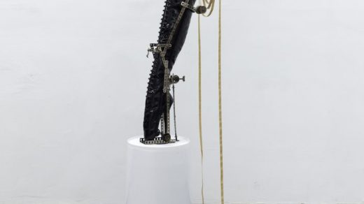 Sydney Shen, Thirst is the Mother of Corvid Ingenuity (2020). Courtesy of the artist and Gallery Vacancy, Shanghai. Yan Du Collection.